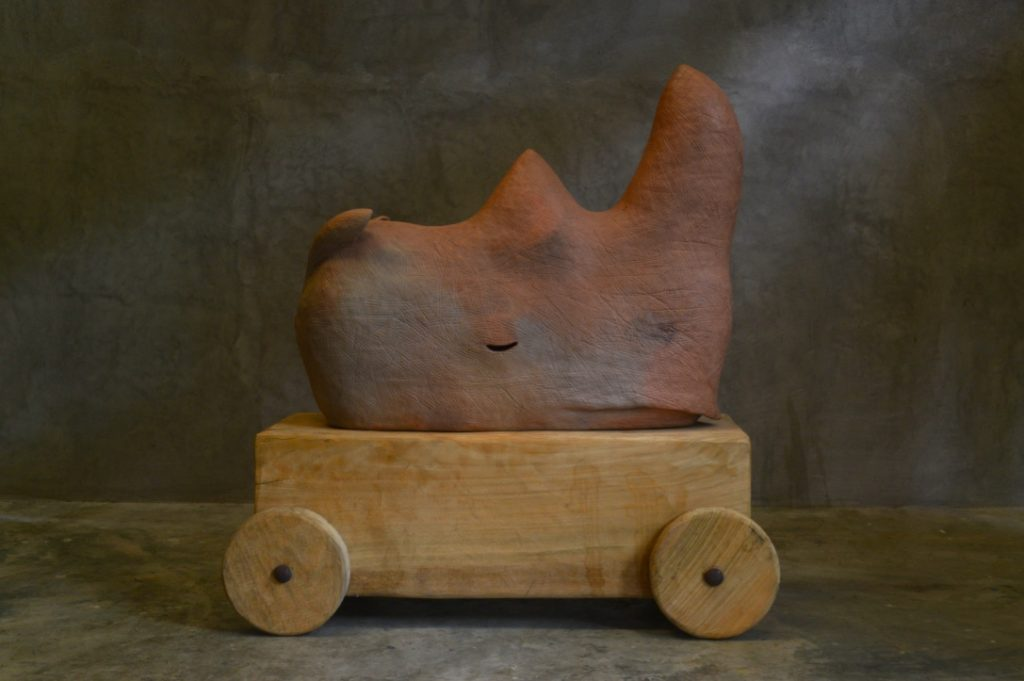 rhino 2014